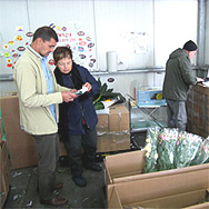 Professional flower export services