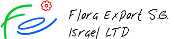 Flora Export S.G. - direct wholesale flowers delivery by air from Israel